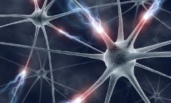 istock_neurone