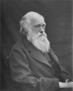 1878_darwin_photo_by_leonard_from_woodall_1884_-_cropped_grayed_partially_cleaned