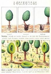 codex_seraphinianus_2