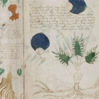 Το απίστευτο χειρόγραφο Voynich