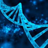 Αθανασία και νεότητα: η επιστήμη έσπασε το φράγμα του DNA