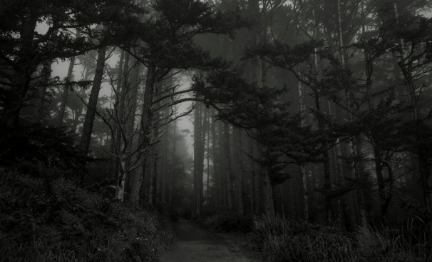forest_of_dreams_by_jorgipie-daig3x5