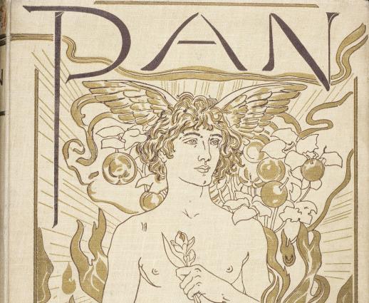 pan_cover