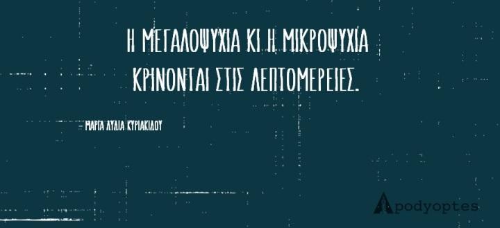 q11 (19)