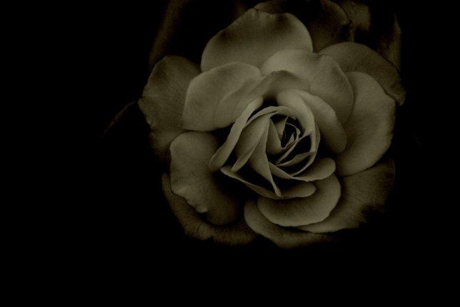 darkness_by_jessmerlo-d3b9zgy