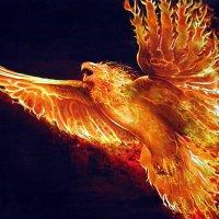 «Το Χρυσόμαλλο Πάθος»