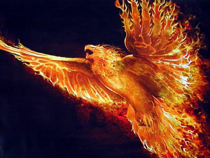 alistair_the_golden_phoenix_by_kuroxakia-d5ldwff
