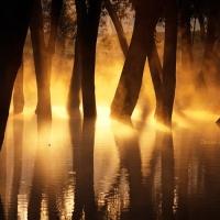 «Φως και φωτιά»