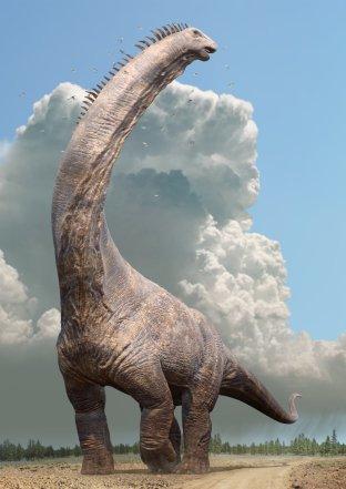 Dinosaurs Alamosaurus