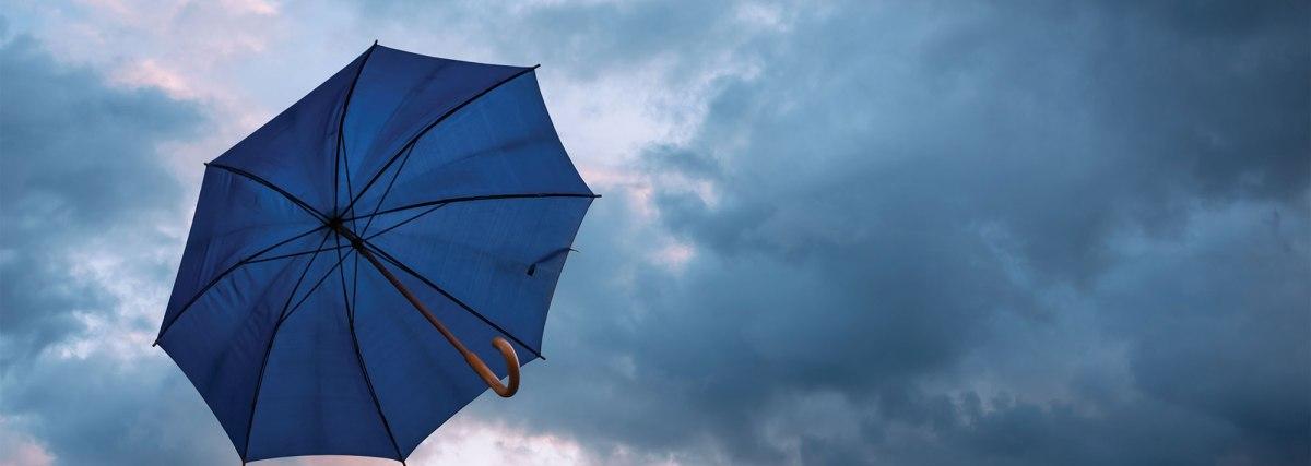 «Η μαγεμένη ομπρέλα»