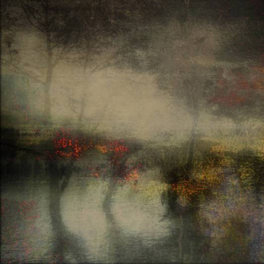 from_drowning_trees_comes_peace_by_paralleldeviant_d6fitq3-fullview
