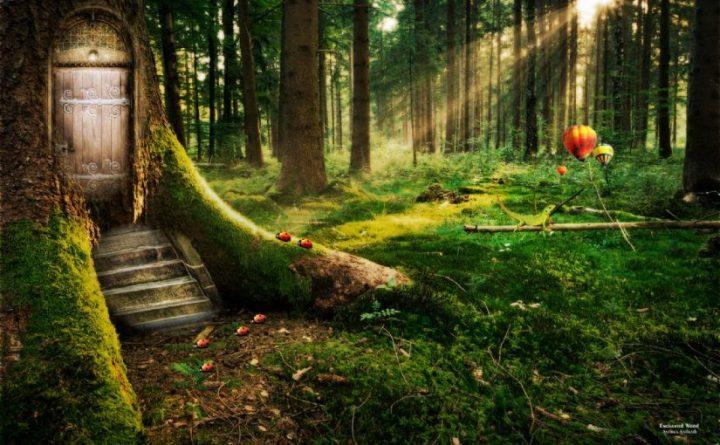 dream-interpretation-forest_1200x0-825x510