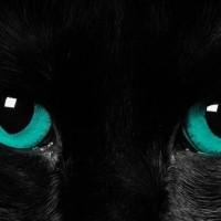 Αδριανός και Σρέντι: «Spooky action at a distance»
