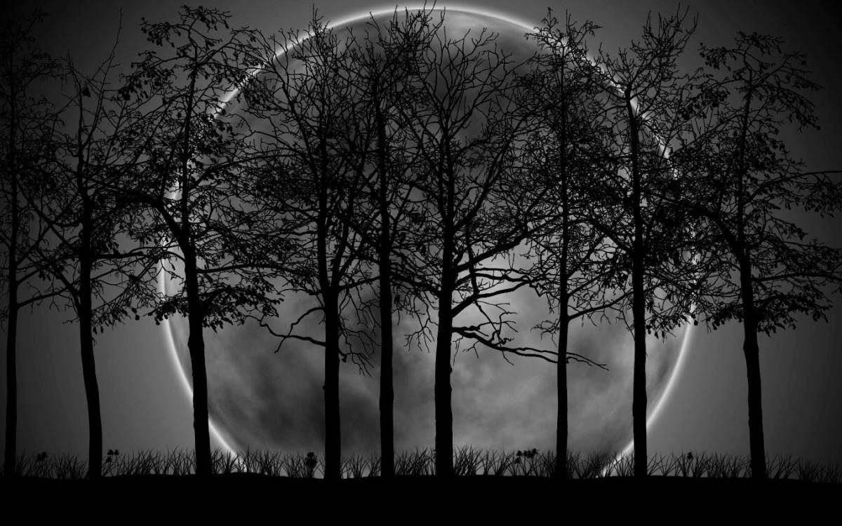 «Το μαύρο φεγγάρι»