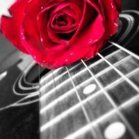 Κώστας Πάνος : 6 υπέροχα ποιήματά του που περιμένουν να ενωθούν με τη μουσική